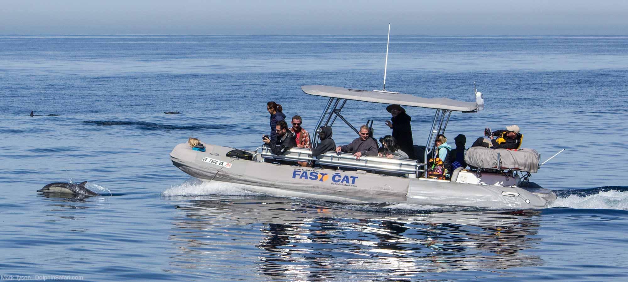 Fast Cat boat