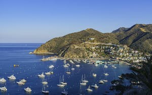 City of Avalon in Catalina Island