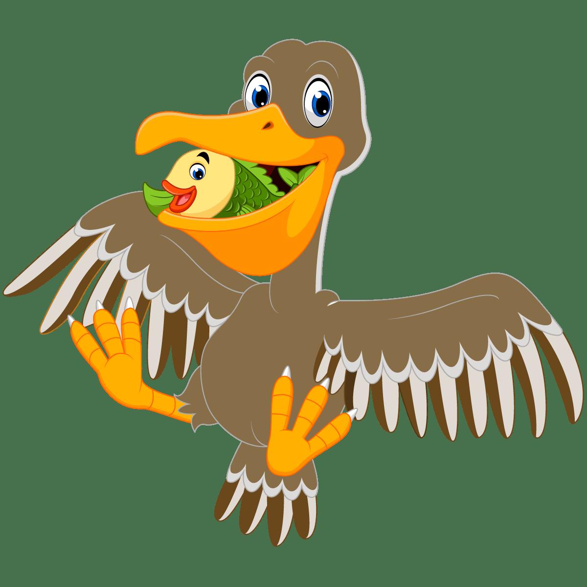 Brown pelican cartoon