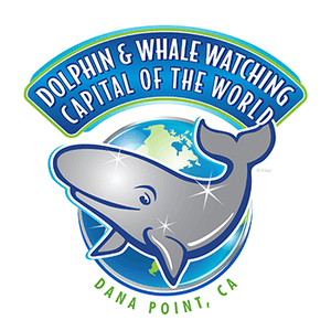 Dana Point Dolphin and Whale Watching Logo