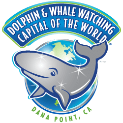Dolphin and whale watching capital of the world logo