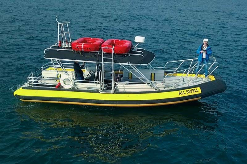 Zodiac Boat AllsWell near Dana Point, California
