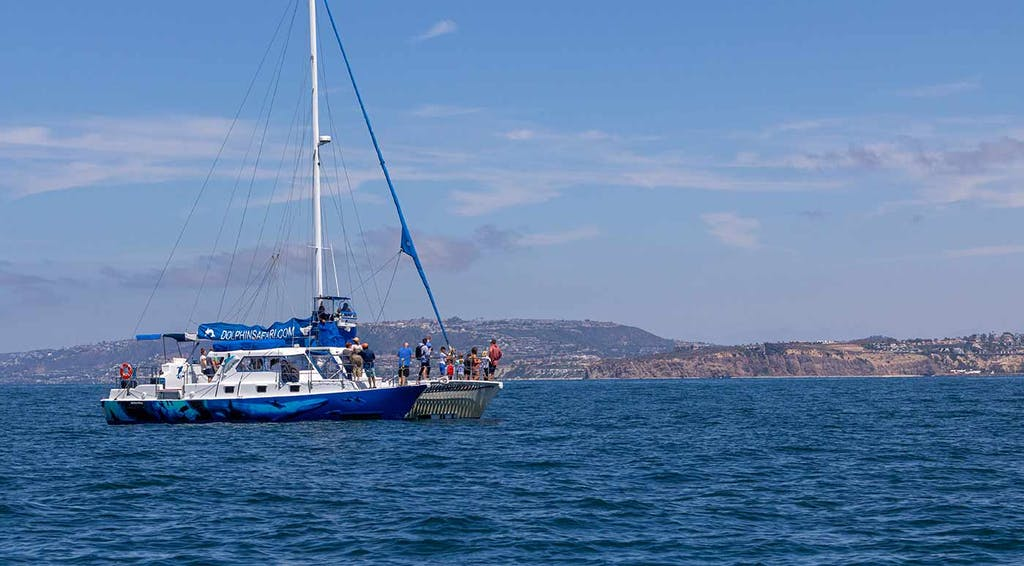 Whale watching catamaran Manute'a passing in front of Dana Point Headlands