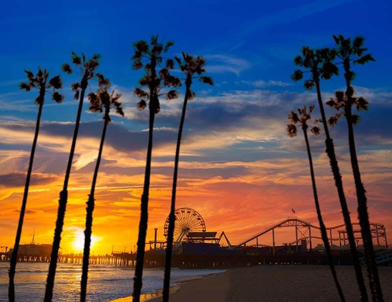 Palm trees in front of sunset behind the ocean and Santa Monica pier