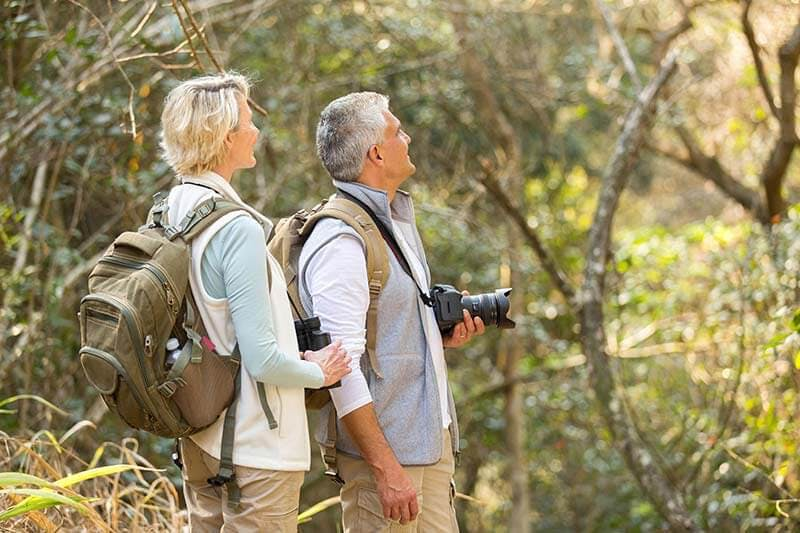 A man and woman bird watching in a forest