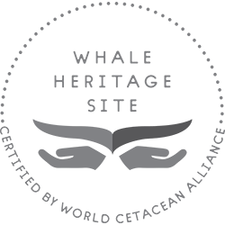 Whale Heritage Site Logo