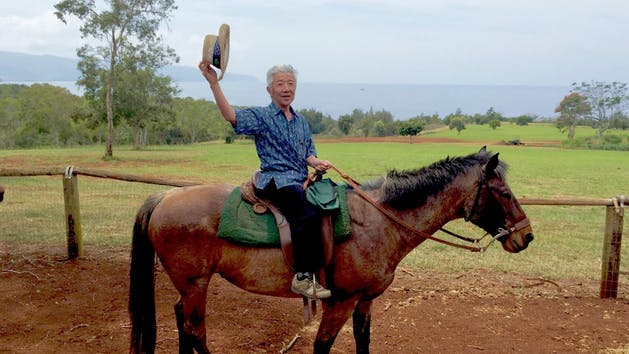Happy Trails trail rides in Oahu