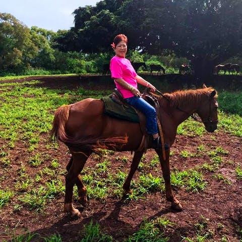 Bunny, a Happy Trails Hawaii horse
