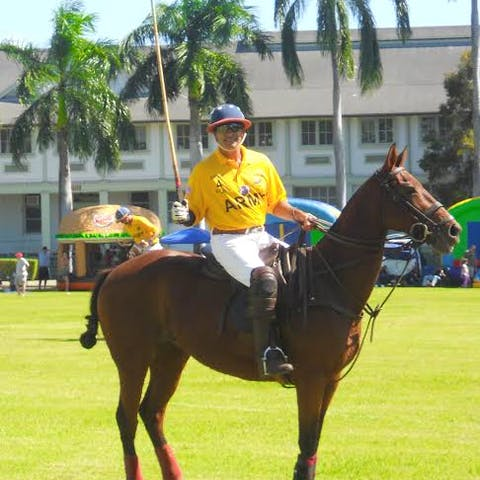 Hanalei, a Happy Trails Hawaii polo horse
