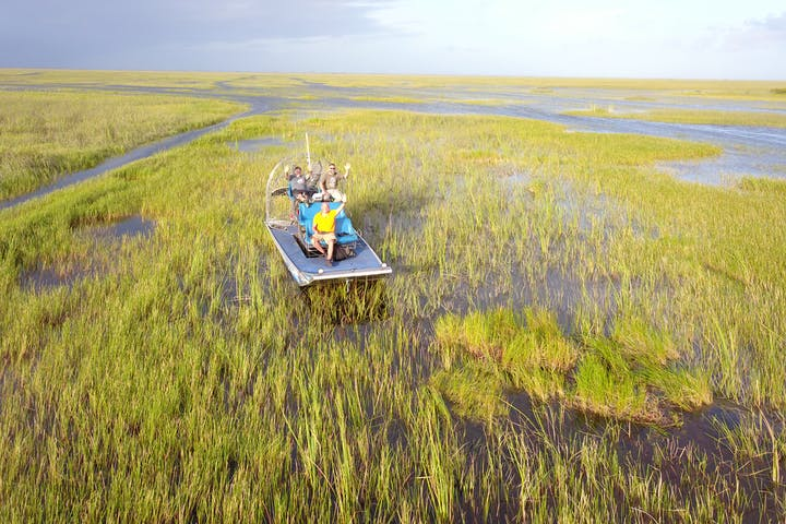 Florida Everglades Tours