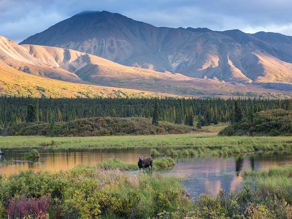 Great landscape of Alaska