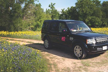 AO Tours Black Land Rover with Pink AO Tours Austin Logo on the side. Yellow flowers and lots of Bluebonnets on either side of car.