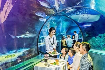Dining underwater in a special restaurant in Tumon, Guam