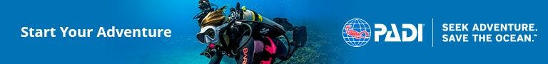 PADI scuba certification courses to start your adventure.