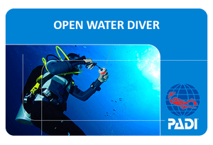 PADI open water diver card for a Maui scuba diving certification course.