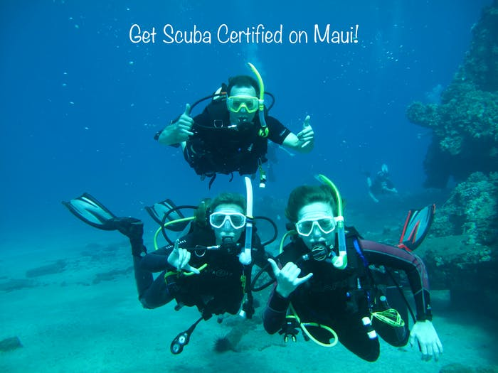 Maui Scuba Certification: How To Prepare For Your Course