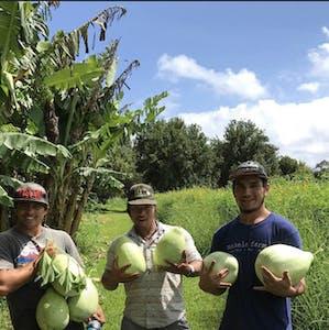 Mahele Farm is Hawaiian-owned.