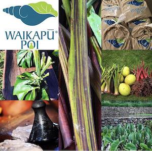 Nohoana Farm is Hawaiian-owned featuring Waikapu Poi.