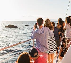 Best wildlife watching cruises in Maui