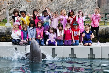 kids birthday party with dolphin