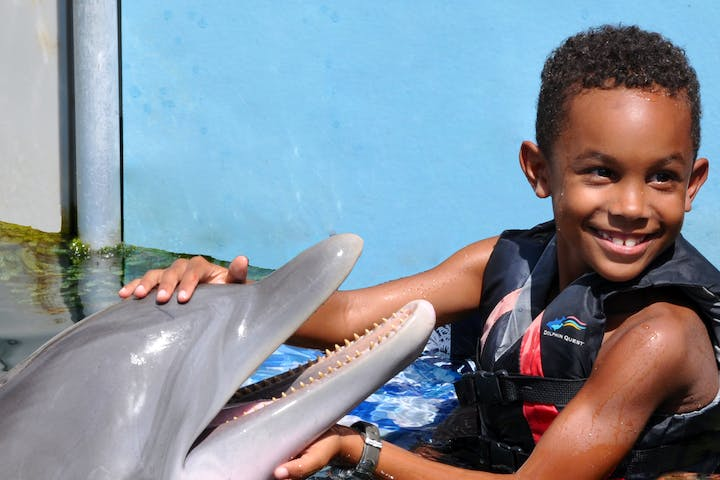 kid with dolphin in water