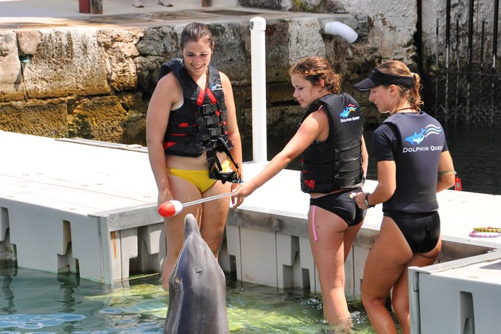 women training dolphin