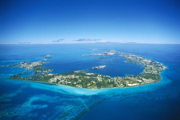 Dolphin Quest Beginning of Bermuda Location