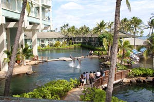 Dolphin Quest new location on Oahu