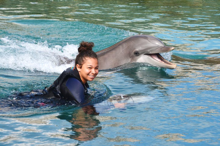 girl in water with dolphin