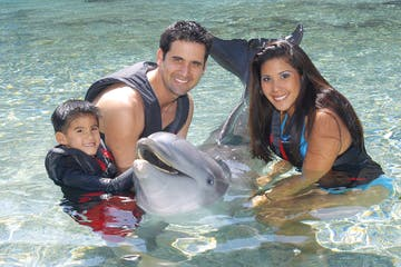 family with dolphin
