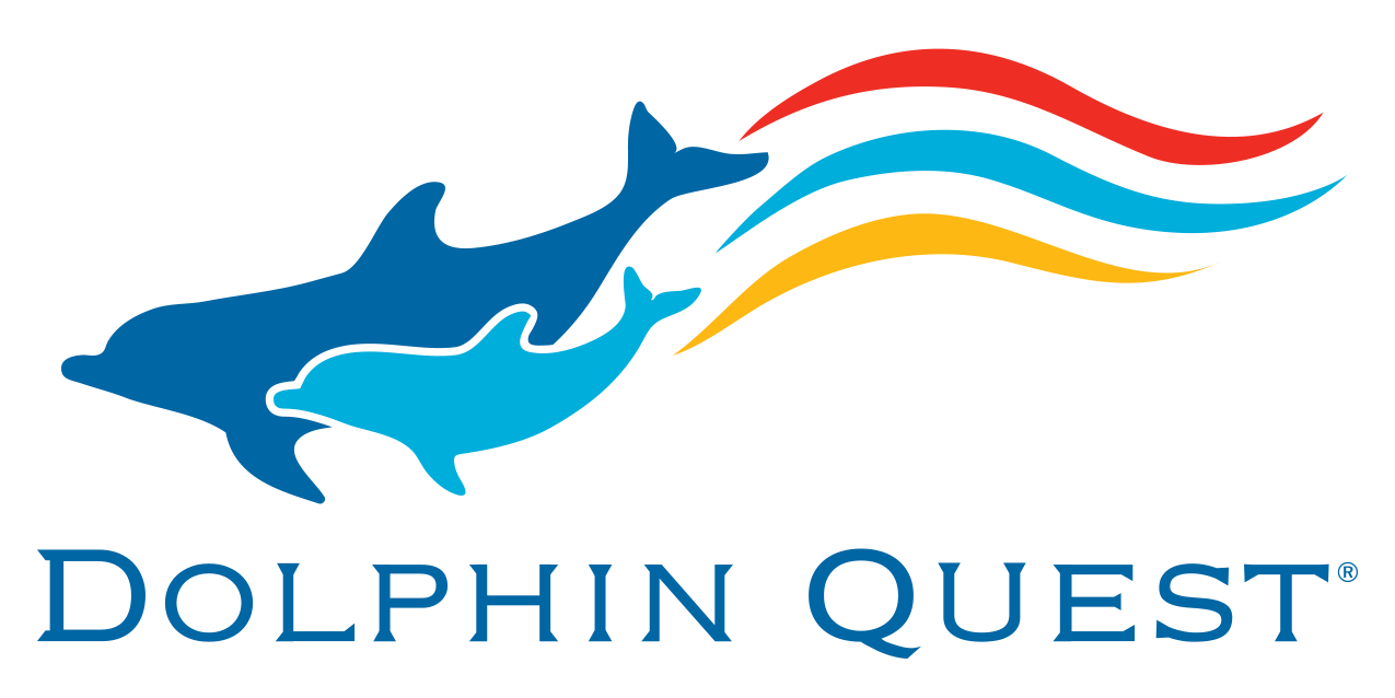 dolphin quest coupon