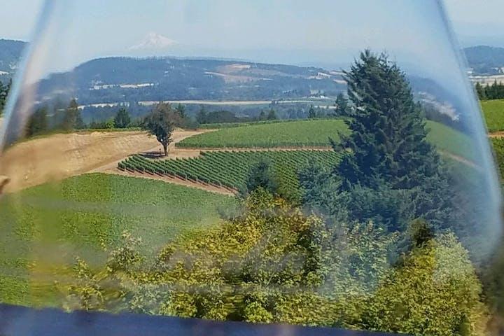 wine glass and vineyard