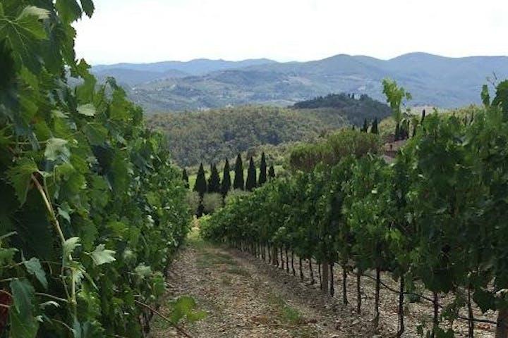 Radda in Chianti landscape