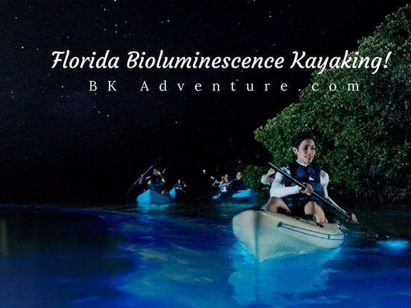 bioluminescence kayaking