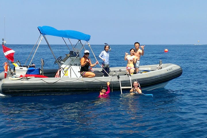MORNING Deluxe Wild Dolphin Swim and Kealakekua Bay Snorkel