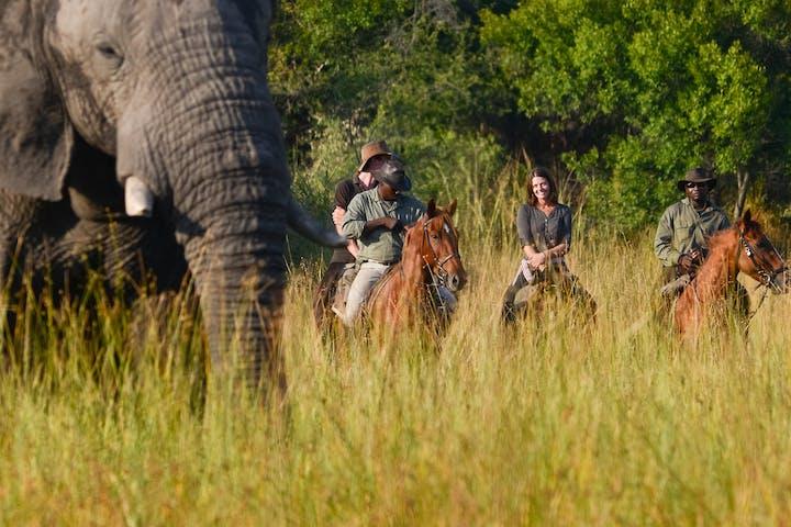 Victoria-Falls-on-Horseback