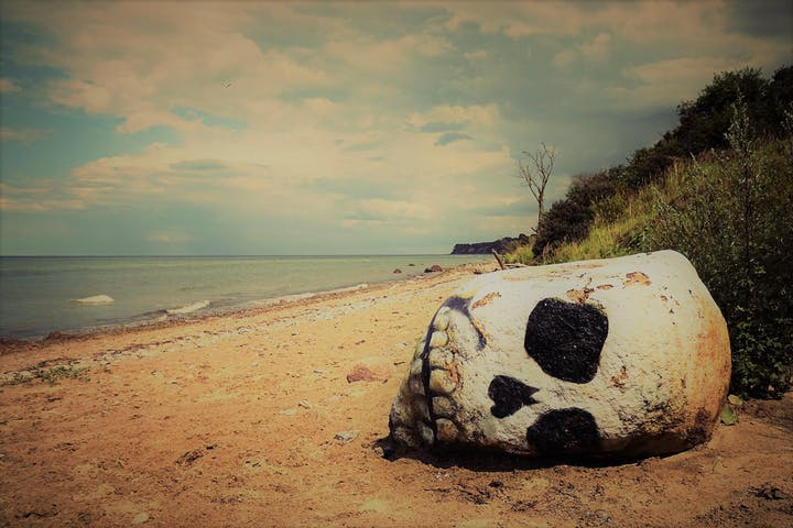 Beach with skull laying in sand