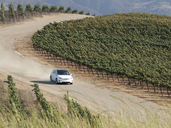 tesla driving through vineyard