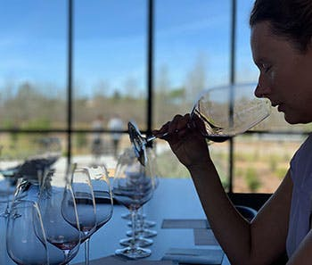 sustainable-wine-tours-private-tasting