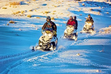 Adults and children on snowmobile tour