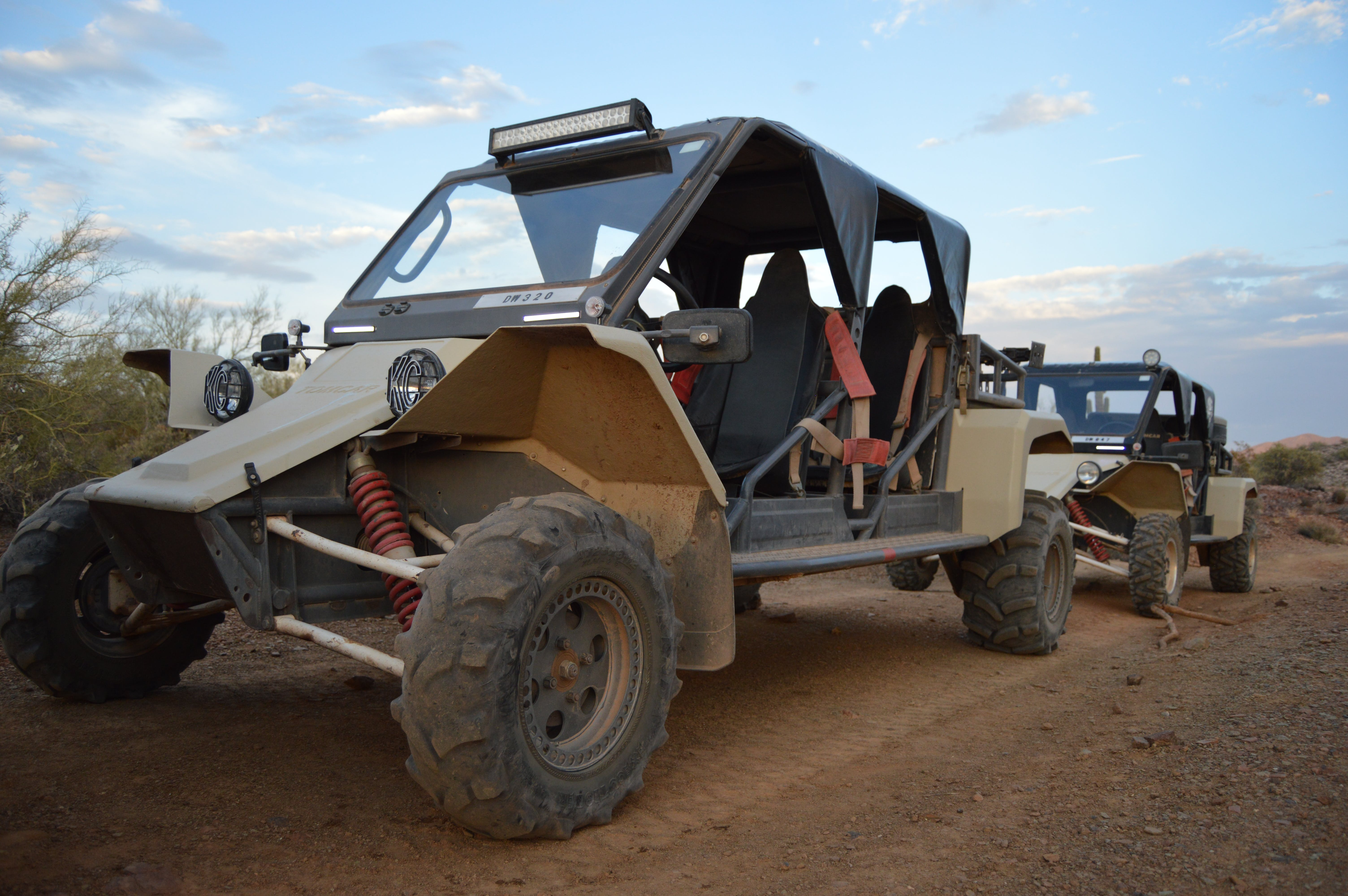 What Is A Tomcar Desert Wolf Tours