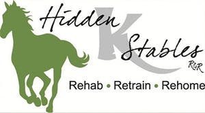 Hidden Stables: Rehab Restrain Rehome