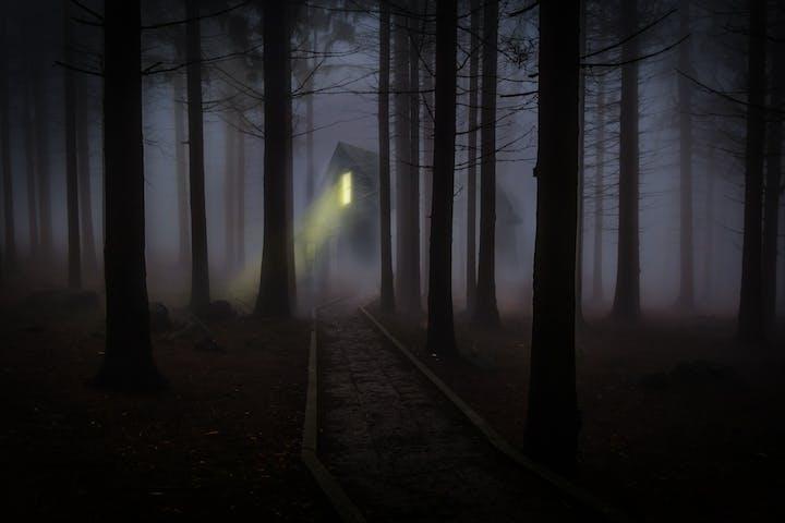 spooky cabin in foggy woods
