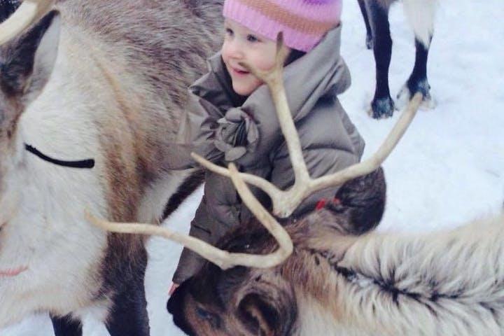reindeer farm reindeer kid