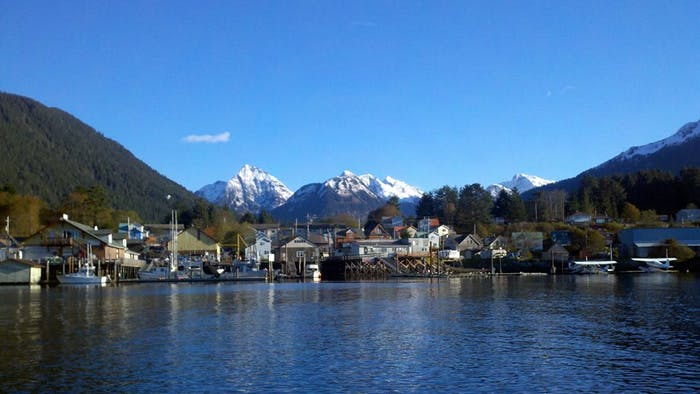 10 Little Known Facts About Sitka Alaska Sitka Wildlife
