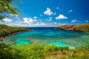 Hanauma Bay Oahu Photo Tours