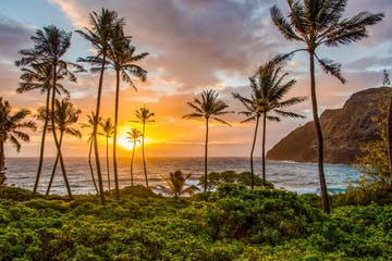 Makapu'u Beach Oahu Photo Tours