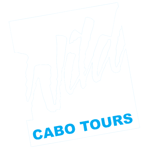 Wild Cabo Tours | Cabo San Lucas Boat Tours