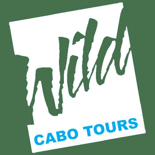 Wild Cabo Tours