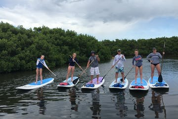 6 people standing up on paddle boards in the water